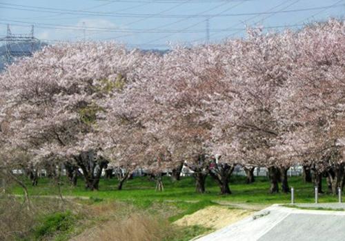 春日温泉郷